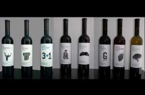 Máximo Abete Winery