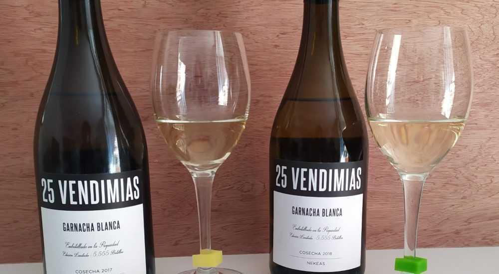 Vertical Tasting Of White Wine Of Bodegas Nekeas